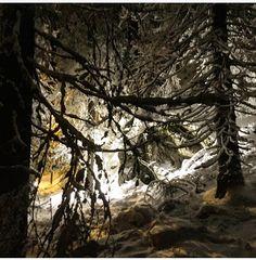 Koli, December 2016, Finland