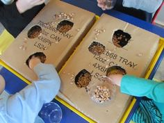 "Exploring what's ""in"" and ""out"" - a fun and simple game with holes cut into boxes. *repinned by WonderBaby.org"