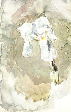 Михаил Александрович Врубель. Белый ирис.