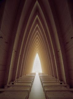 Cathedral of wood