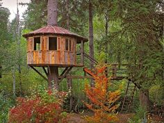 Treehouse Design Ideas That Are Nice Than Your House. From simple tree house plans for kids to the big ones for adult that you can live in. If you're looking for tree house design ideas. Modern Tree House, Simple Tree House, Modern Houses, Artistic Tree, Building A Treehouse, Treehouse Ideas, Romantic Backyard, Tree House Plans, Backyard Ideas