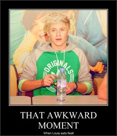 what directioners say about niall | If anything, Niall would eat Louis….