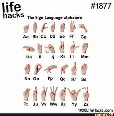 signlanguage - iFunny :)
