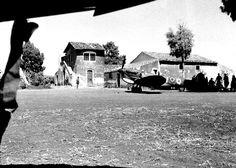 Lentini Sicily | ... -HQ-near-Lentini,-Sicily,-August-26th,-1943-PL-18285lrg-701283.jpg