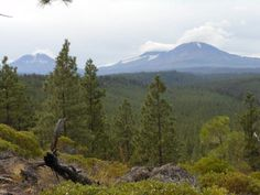 The Three Sisters as seen from the Peterson Ridge Trail's middle overlook.