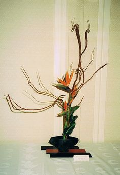 Ikebana | Flickr - Photo Sharing!