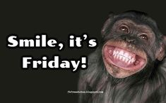 Happy & Funny Friday Quotes To Be Happy on Friday Morning - - Looking for the best Funny Friday quotes pictures, ? shared our best collection of It's Friday Quotes. It can help you to express your feelings about the weekend. Best Friday Quotes, Friday Coffee Quotes, Friday Morning Quotes, Happy Morning Quotes, Good Morning Friday, Morning Memes, Good Morning Funny, Friday Sayings, Friday Weekend