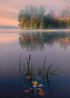 """I think everything will get ripe today so it can be Autumn tomorrow…"" __Emily Dickinson. Photo credit: Whisper by Perri Schelat on in Vermont on a particularly beautiful, very cold and calm morning. Autumn Photography, Amazing Photography, Landscape Photography, Beautiful World, Beautiful Places, Beautiful Pictures, Composition Photo, Foto Nature, Cloudy Weather"