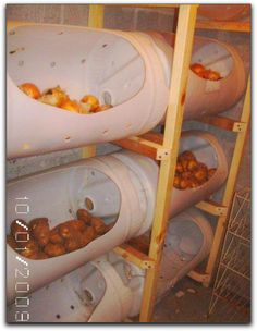 Preppers Post | Root Cellering - I want to do this for my potatoes.#Preppers #preppertalk #survival