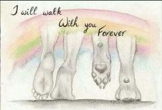 I will walk with you forever.