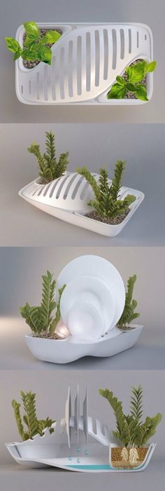 Green Dish Rack save water grow plant. I want this product NOW, and with weddings coming up an amazingly cool gift! BY GROUP 2: