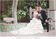 boojum tree wedding   10.11.12