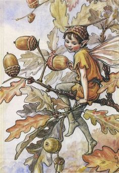 Oak Words Part 1: Oak Fairies, The Green Man & Oak Words of the World at Bill Casselman's Canadian Word of the Day