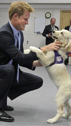 Prince Harry playing with puppy. Getty Images by WPA Pool.