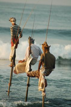 #23 Stilt Fishing in Koggala, Sri Lanka. Watch this traditional and unique fishing method perched high on a stilt, which is not commonly used anymore. Photograph by Deepthi Pieris