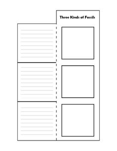 Vocabulary for Interactive Notebooks-Freebie Foldable