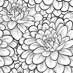 129 best black and white flowers background images on pinterest hand drawn contour lines and strokes find this pin and more on black and white flowers background mightylinksfo