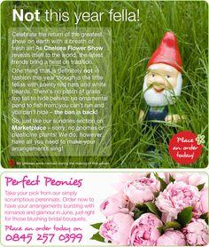 Chelsea Flower Show flower online ad campaign for eFlorist Marketplace