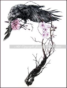 Raven and the cherry blossom tree