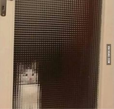 Low resolution cat