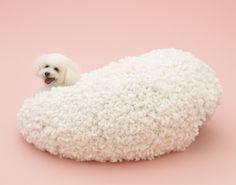 妹島和世×ビションフリーゼ。 「犬のための建築」( http://architecturefordogs.com )。 【CasaBRUTUS編集長 松原亨】 http://lexus.jp/cp/10editors/contents/casabrutus/index.html ※掲載写真の権利及び管理責任は各編集部にあります。LEXUS pinterestに投稿されたコメントは、LEXUSの基準により取り下げる場合があります。