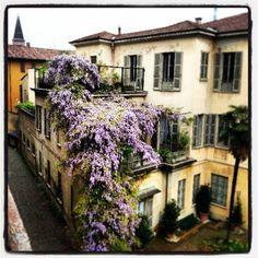Buongiorno #Milano Eccoci in Brera con Antoine Laguerre #milanodavedere Milano da Vedere