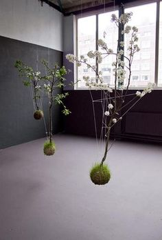 These hanging gardens are an art installation type project by Fedor. Using string, moss, grass, and bowls or a glass reservoir - plants are transformed into suspended living works of art that are a variation of the Japanese botanical style, kokedma.