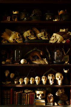 Ultimate Witch Bookshelf