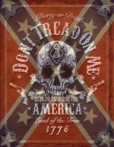 Rebel skull - Confederate flag w Don't Tread on Me slogan