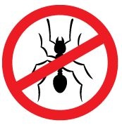 One Pest is Too Many-Alpha Ecological Pest Control Blog