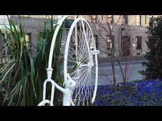 Torino si scopre romantica grazie all'artista-giardiniere