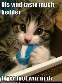 Dis wud taste much bedder...