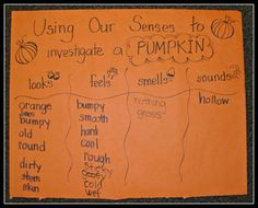 Image result for pumpkin five senses investigation