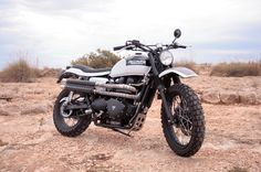 Triumph Bonneville Pegaso - Grease n Gasoline