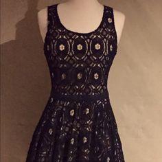 Black/Cream lace dress with cutout back. NWT Black/Cream lace dress with cutout back. NWT Tinley Road Dresses Midi