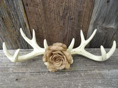 Wall Antlers/ Faux Taxidermy/ Ivory/ Burlap Flower/ Antler Wall Mount/ Distressed/ Shabby Chic/ Wall Decor/ Rustic/ Country Wedding