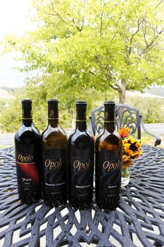10 Paso Robles Wineries you must visit