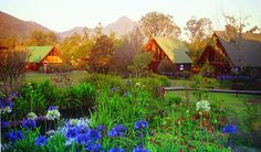 Tsitsikamma Lodge Conference Venue in Stormsriver, Eastern Cape