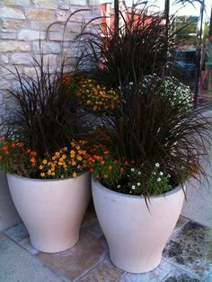 Love the contrast between white pots and black grass.