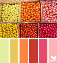 Color Pick | Design Seeds