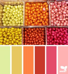Color Pick | Design Seeds