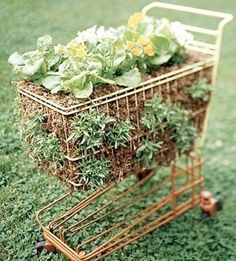 Wowowow! Some amazing recycled and re-purposed container gardening ideas, including this shopping cart used to grow fresh salad! #containergardeningideas #containergardening