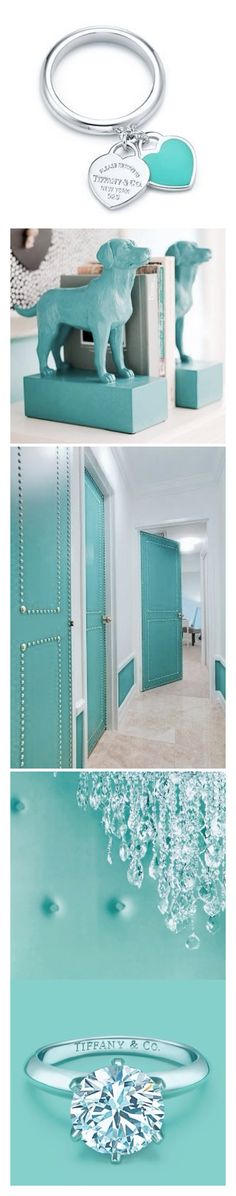 Luxury in Tiffany Blue LBV
