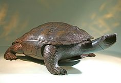Antique Wooden Japanese Turtle Sculpture