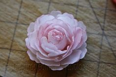 Tammy's Frosted Memories: Wafer Paper Flower Tutorial