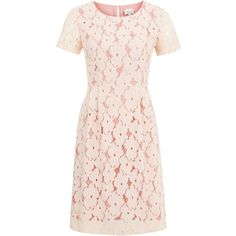 Floral Lace Bell Dress by Poem (21.500 CLP) ❤ liked on Polyvore featuring dresses, vestidos, lace, robe, peach, pastel floral dresses, pink floral dresses, peach pink dress, pastel lace dress and lace overlay dress