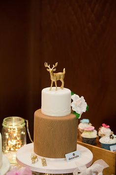 Photo from Autumn Show 2015 collection by Fineline Photography Professional Photographer, Autumn, Cake, Photography, Collection, Food, Photograph, Fall, Food Cakes