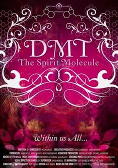 DMT: The Spirit Molecule (2010) This documentary explores the powerful psychedelic compound DMT (dimethyltryptamine), which is naturally produced in humans and scores of other species. Does it play a role in sustaining life -- or, beyond that, explaining human spirituality?