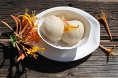Bill Smith's Honeysuckle Sorbet recipe is a lot of fun, easy to make and an unexpected delicious sweet if you have a fragrant batch of honeysuckle petals.