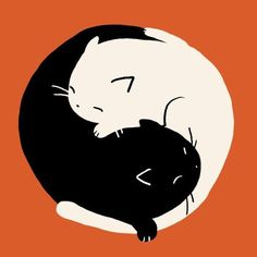 The Most Wonderful Cat Yin Yang Picture - Dog Show Pictures Kunst Inspo, Art Inspo, Art And Illustration, Illustrations, Yin Yang, Cat Mandala, Kawaii Drawings, Cat Tattoo, Cat Drawing